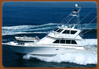 Cabo San Lucas Sport Fishing  - Amenities